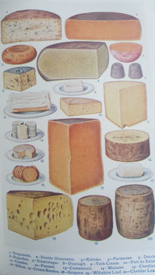 Mrs Beeton´s - Book of Household Management - 1912