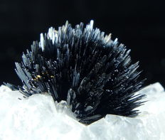 Amazing black Goethite crystals on white Quartz  - 5,7 x 3,1 x 2,5 cm - 27 gm