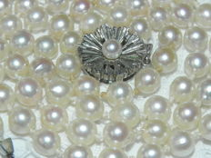 Pearl necklace made of Japanese Akoya salt water pearls Ø 6.2 mm