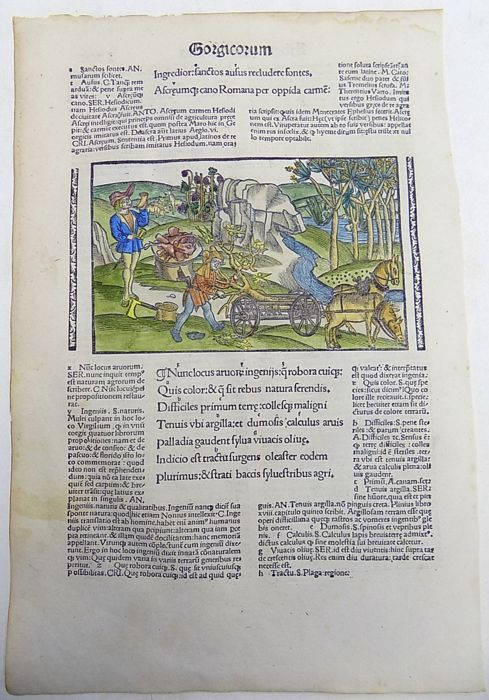 Gruninger Master; Virgil - Brandt Edition - Agriculture: Man with Horn, Plough, Vineyard, Wine, Pigs' Heads - 1502