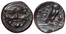 Greek Antiquity - Sicily, Kamarina ca. 420-405 BC - Æ Uncia (Bronze; 12mm; 1,23gm.) - Gorgon's head / Owl -  Calciati III, 18