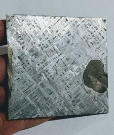 Large IIIAB meteorite slice - 82 x 79 x 3 mm - 122 g
