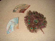 Fan - large fan made from real peacock feathers