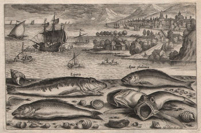 Adriaen Collaert (1560 - 1618) - Landscape with Fish and  Pieter Breugel Vessels - First state - ca.1598
