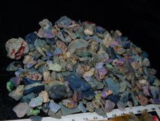 Lightning Ridge Fossil/Crystal Opal Specimens/Rough Multicolours - 1090 ct