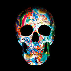 Thomas Bijen - 9 Dimensions of the Skull II