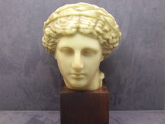 Apollo head of Vaison la Romaine - Sculpture in beeswax in antique style - signed C. A. - France - early 20th century