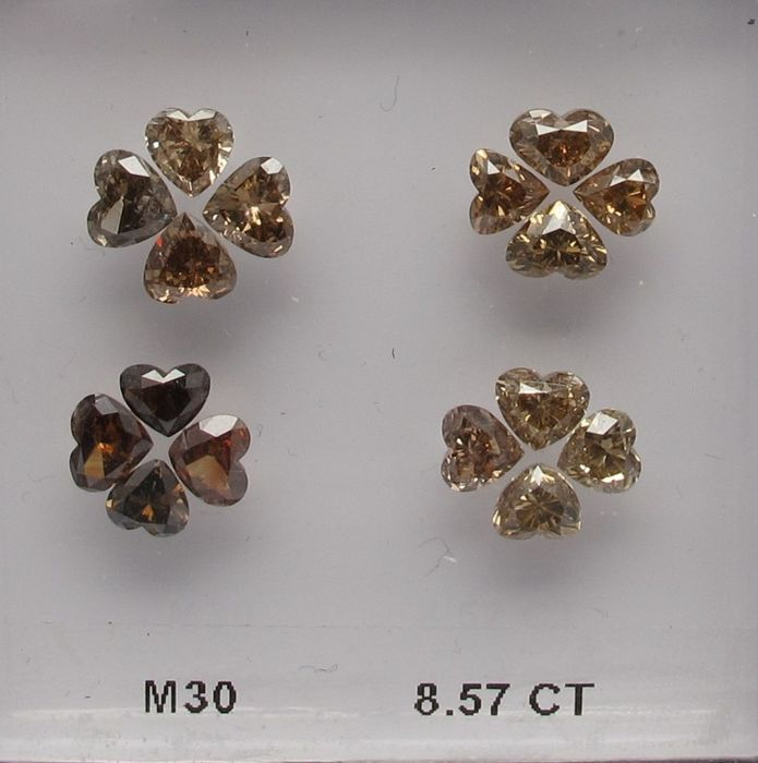 """4 beautiful """"Flower""""  lay-outs with natural champagne heart-shapes"""