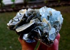 Terminated Aquamarine Crystals with Muscovite Mica Specimen - 88*94*54 mm - 472gr
