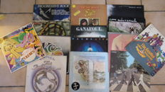 lot of 14 LP of various artists including :The Beatles, Eric Clapton ,Steve Hackett and More