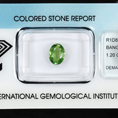 Demantoid garnet	 – 1.20 ct