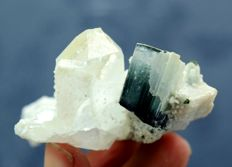 Terminated & Undamaged Bi-color Tourmaline Crystal With Clear Quartz  -  65*46*28 mm - 54 gm