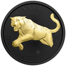 Canada – 5 Dollars 2016 'Cougar – Puma' black ruthenium gilded – 1 oz silver