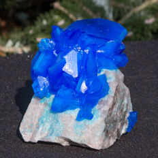 Blue electric chalcantite on quartz slab - Poland - 11 x 7 cm - 616 g