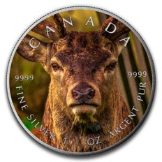 Canada - 5 dollars 2016 'Maple Leaf - Deer' with colour - 1 oz silver