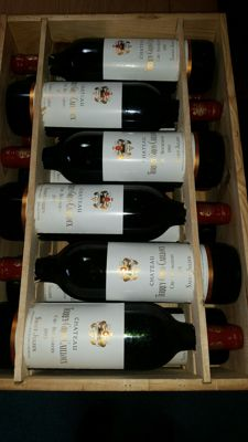 1995 Chateau Terrey Gros Cailloux, Saint-Julien Cru Bourgeois - 12 bottles in original wooden case