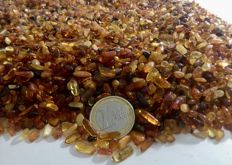 A lot of Baltic amber - 500 g