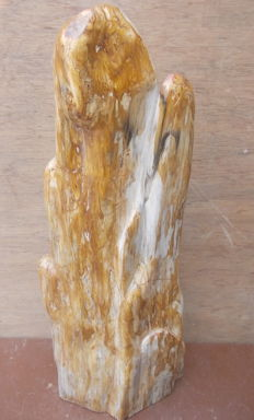 Sculpture of petrified wood - 69 cm - 28.4 kg