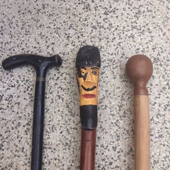 Three Handmade Curious Canes / Walking Sticks / Shepherd Staff