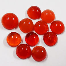 Lot of beautiful Mexican Fire Opal - 7.10  Ct  (11)