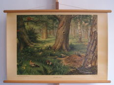 Beautiful school poster / school map In the forest of M. A. Koekkoek, luxury edition from approximately 1950 in excellent condition, beautiful colours, see pictures. On linen.