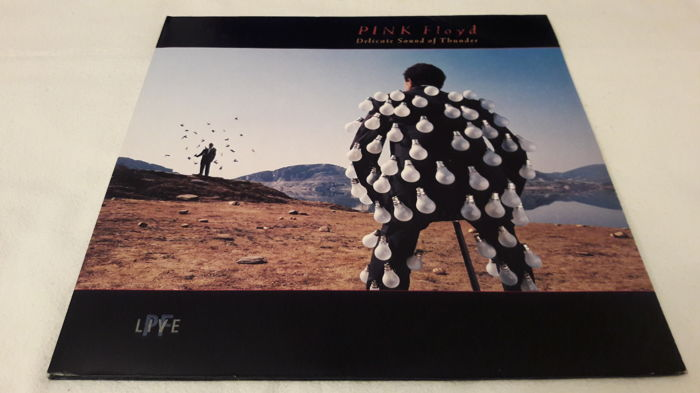 Pink Floyd - The Dark Side of The Moon, Delicate Sound Of Thunder (2 LP Set) (148)