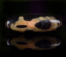 Tibet antique agate Dzi - 35 x 12mm