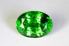 Intense Green Tsavorite - 2.26 ct