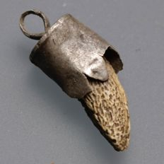 "Viking Bear""s Tooth Pendant  - 22 mm."