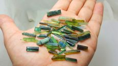 Beautiful multicolr tourmaline mix. - L 0,8-3,2cm  W0,2-0,6cm. - 105 ct
