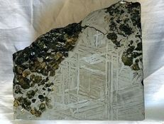 Meteorite Pallasite Seymchan - XL Block with olivines and fusion crust - 3.2 kg