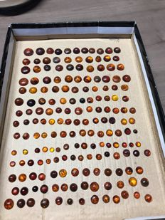 Huge collection of half-worked Baltic Amber round cabochons - 5 to 20 mm - 05 to 1.9 g - 85.5 g (177)