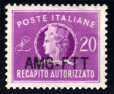Trieste A, 1954 - Authorised Delivery AMG-FTT - Overprinted Variety - New Type - Sassone No. 5A