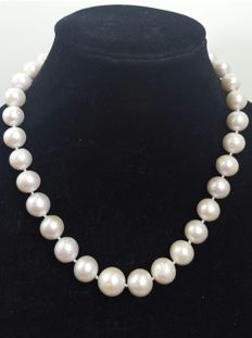 Sterling silver - Necklace XL freshwater-cultured pearls arranged by size - Length:  48 cm