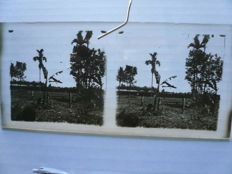 Three stereo glass pictures from the flight by Gijs Küller with the Antoinette above Medan 1911