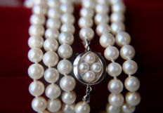 Long (93cm) natural Japanese Akoya necklace with beautiful lustrous sea water pearls **No Reserve**