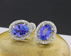 A pair of tanzanite-brilliant ear studs, totalling approx. 2.53 ct, 750 white gold ---no reserve price---