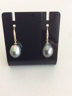Drop shape tahiti pearl earrings