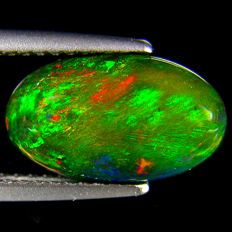 Black opal - fine quality 12.7 x 7.5 x 4.6 mm 1.99 ct