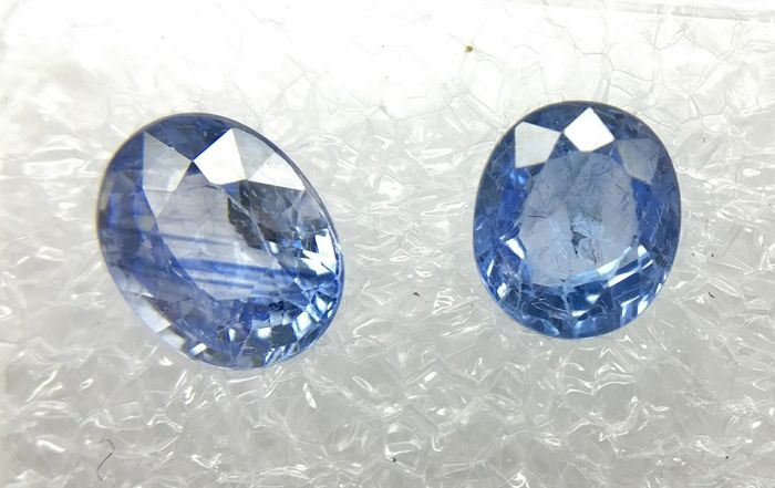 Couple of 2 Sapphire Blue 1.91 ct    - No Reserve Price