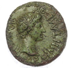 Roman Empire - Kings of Thrace - AE assarion - Rhoemetalkes I with Augustus - struck 11 BC-AD 12 - 19 mm 3,67 gr