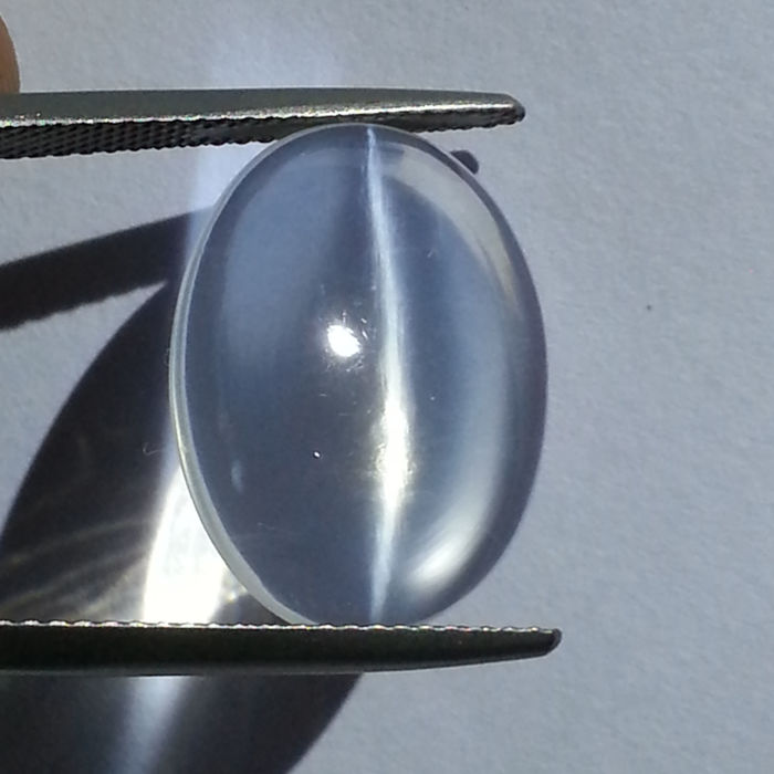 Cat's Eye Moonstone - 7.31 ct