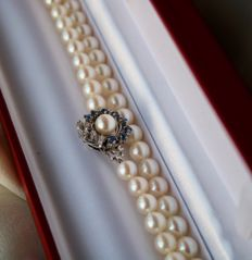 Pearl necklace with natural sea/salty Japanese Akoya in ivory white color with an excellent lustre. White-Gold clasp with ca. 0.775Ct. quality natural blue Sapphires and diamonds. Excellent sta