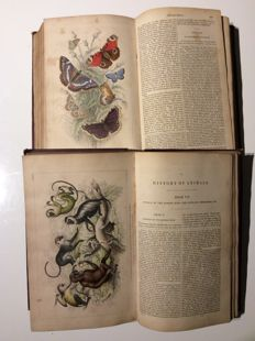 Oliver Goldsmith - A History of the Earth, and Animated Nature - 2 volumes - 1862