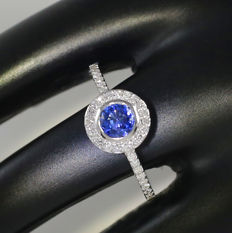 18 K White Gold Blue Sapphire and Diamond Ring 1.04 ct. - Blue Sapphire 0.62 ct. and Diamonds 0.42 ct.- H-I - SI – Top Width 10 mm  x 10  mm - 2.00 g - Ring Size 16.5 /52