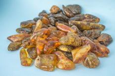 Raw Baltic amber - 550 g.