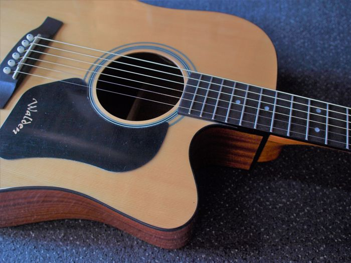 New Walden CE350CEG Dreadnought with cover, semi-acoustic