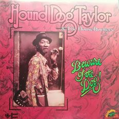 3 LPs of Hound Dog TAYLOR & 2 LPs of Eddie Playboy TAYLOR