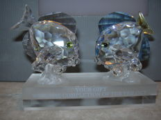 Swarovski - Silver Crystal SCS Picasso fish clear & coloured - dealers display