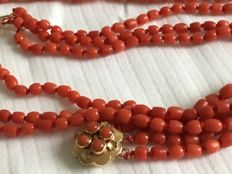 Antique, knotted precious coral necklace